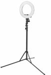 Žiedo formos lempa RING RING LAMP LIGHT 12 + 35 W LED